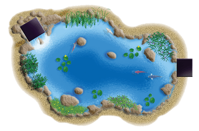 medium-pond-kit_illustration