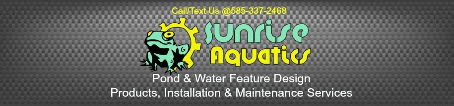 Sunrise Aquatics